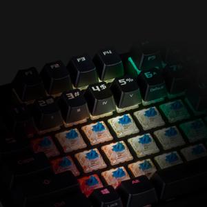 Cherry MX RGB mechanische Schalter