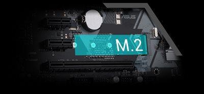 M.2 (für H310 X2 M.2)