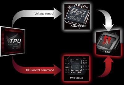 ASUS Pro Clock-Technologie